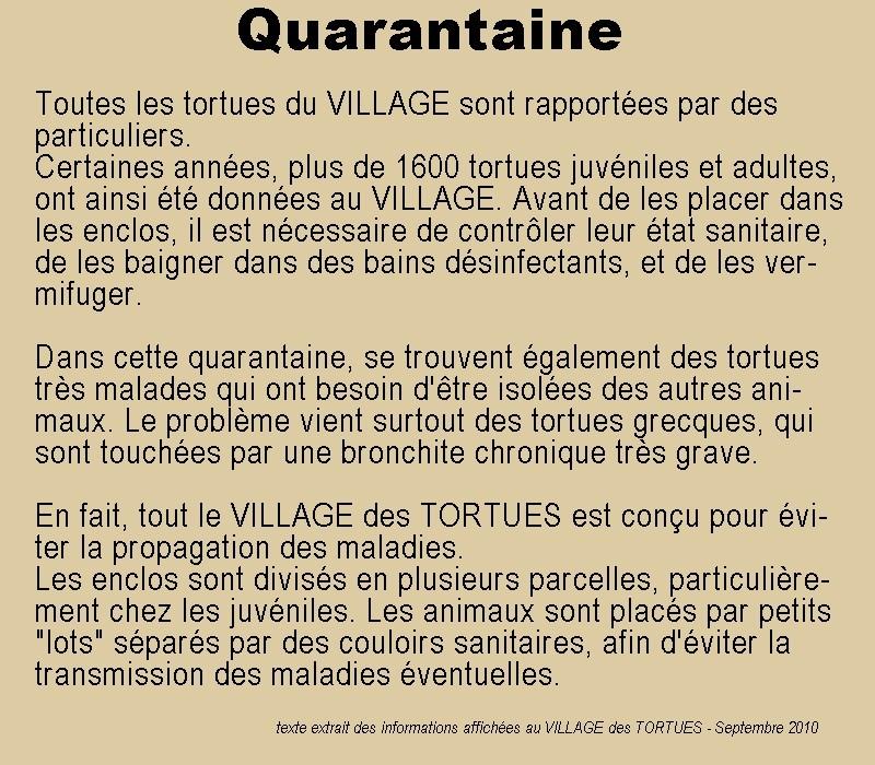 Pour les amoureux des tortues Hermann : stage au village des tortues de Gonfaron (Sud de la France) Fer_st41