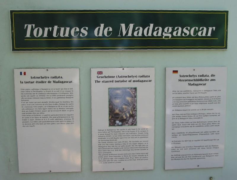 Pour les amoureux des tortues Hermann : stage au village des tortues de Gonfaron (Sud de la France) Fer_st69