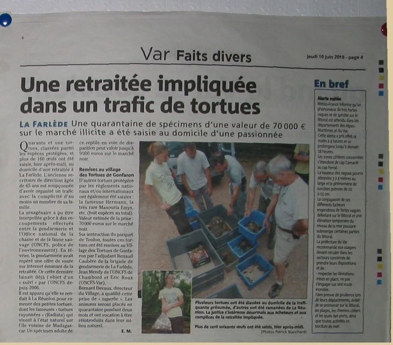 Pour les amoureux des tortues Hermann : stage au village des tortues de Gonfaron (Sud de la France) Fer_st76