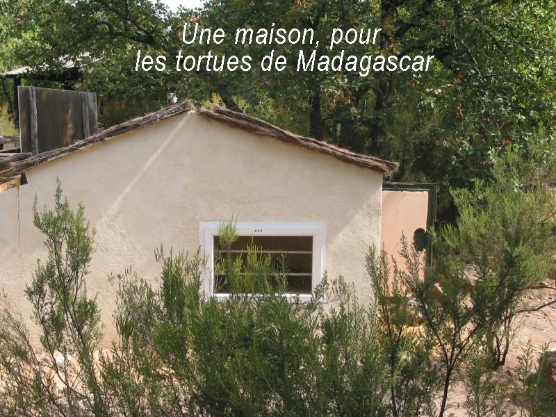 Pour les amoureux des tortues Hermann : stage au village des tortues de Gonfaron (Sud de la France) Fer_st86