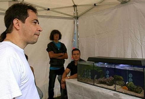 Club aquariophile : nouvelles fraîches  11158512
