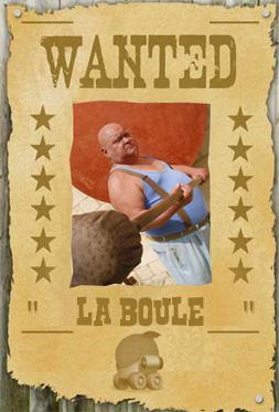 Les mots du caniche nain : Wanted11