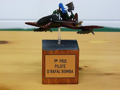 photo des trophées du bombardement P1000010