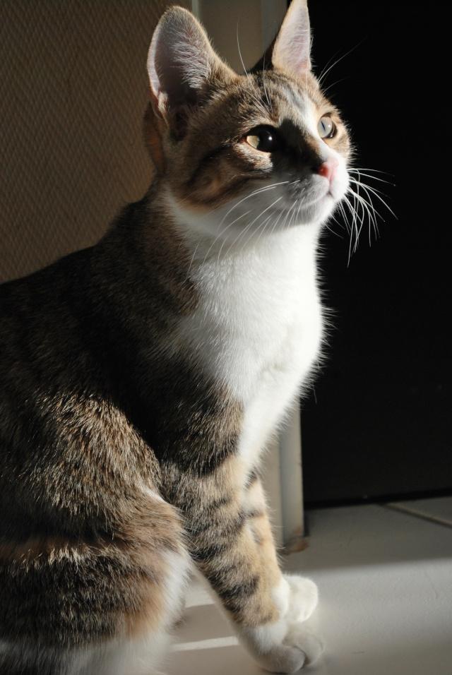 Souki - Page 4 Photo129