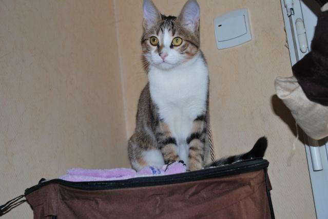 Souki - Page 4 Photo179
