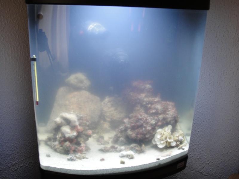 mon eau de mer méditérranéen  Dsc01115