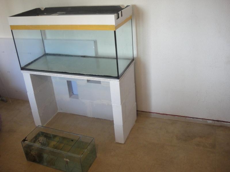 fabrication meuble aquarium siporex  Dsc01516