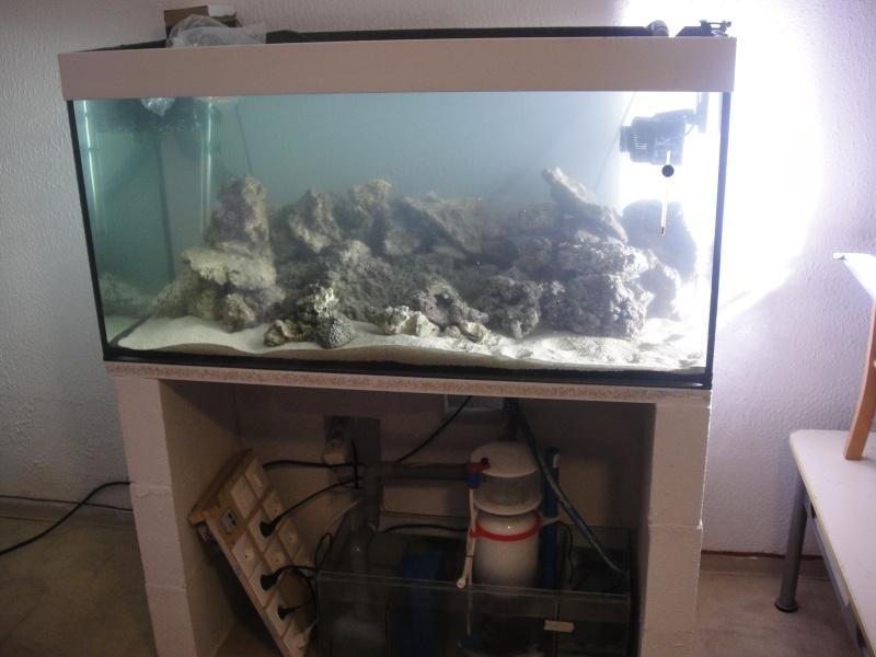 fabrication meuble aquarium siporex  Dsc01521