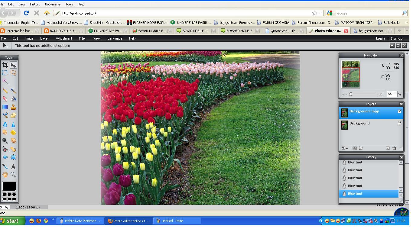 Photo Editor Online Photo_10