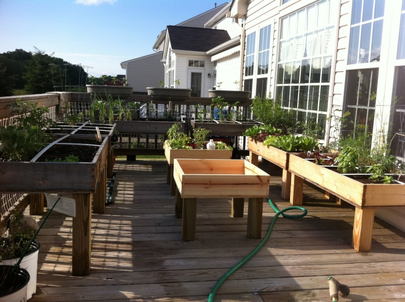 Table top gardens 25699313