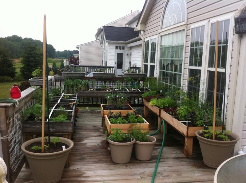 Table top gardens 25767310