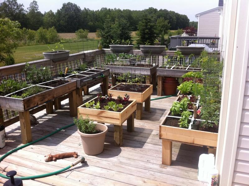 Table top gardens 25957210