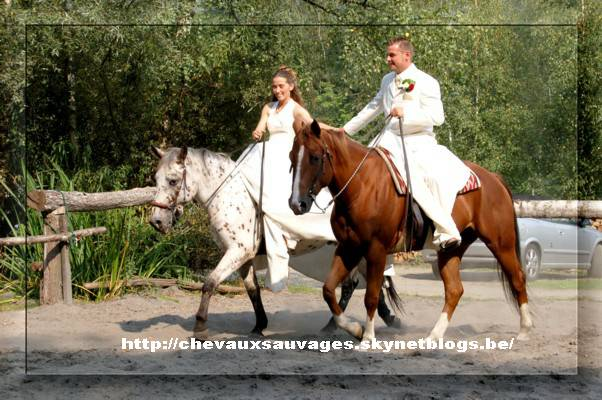 Mariages a Cheval.  Dyn00310