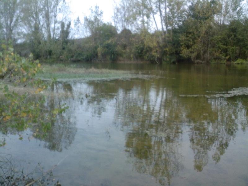 Fleuve Aveyron (Tarn&Garonne)  Spm_a016