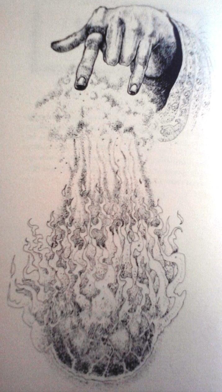 Illustrations P15-0811
