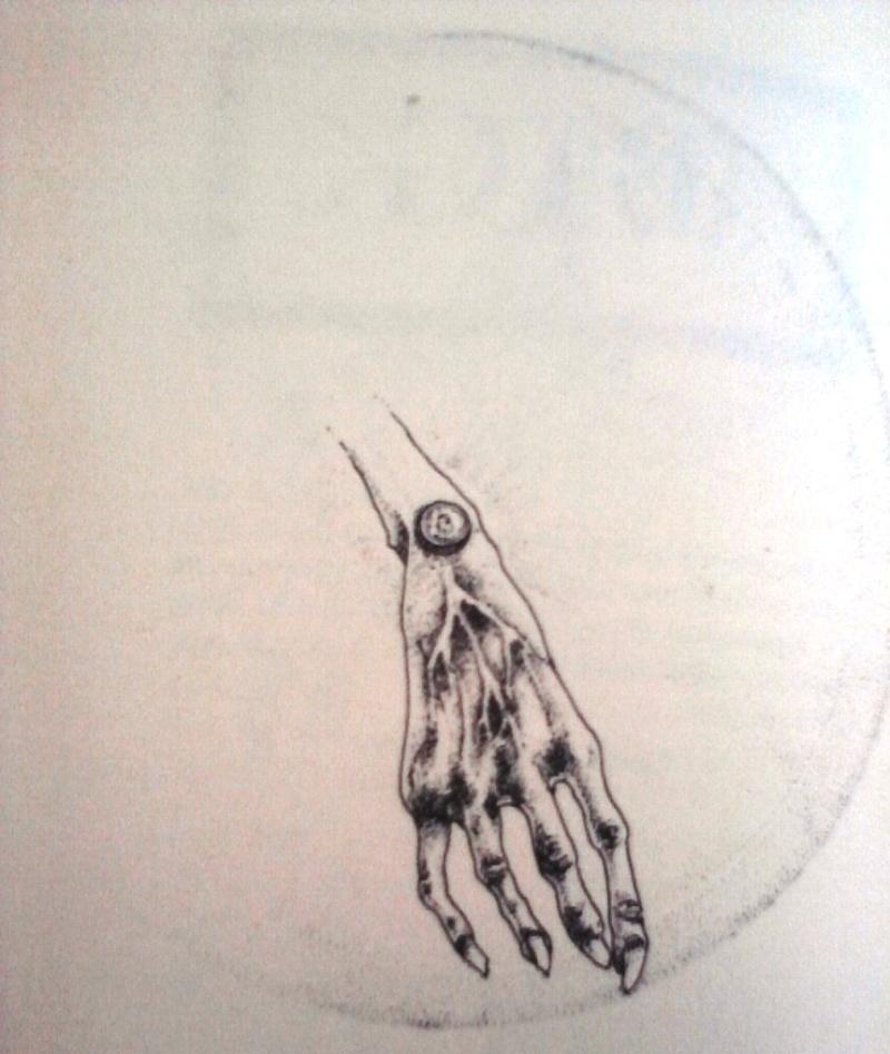 Illustrations P15-0817