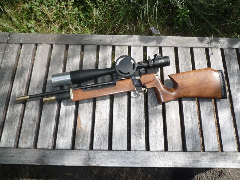 Les armes de Harry P1040118