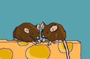 Not Enough Mouse Mice_o11