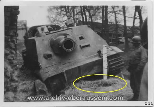 Sturmtiger 1/35 (Tamiya) - Page 3 Monste10