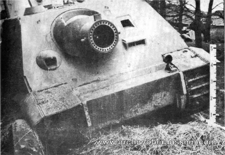Sturmtiger 1/35 (Tamiya) - Page 3 Oberem11