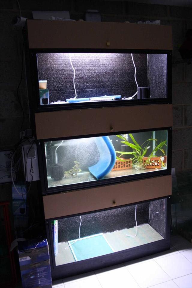 batterie d'aquarium Img_1112