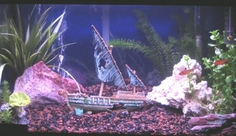 Aquarium 30 gallon tout équipé à vendre!! Aquari10
