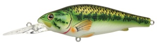 Nouvelle boutique pêche : Monsters Pro Fishing 100_na10