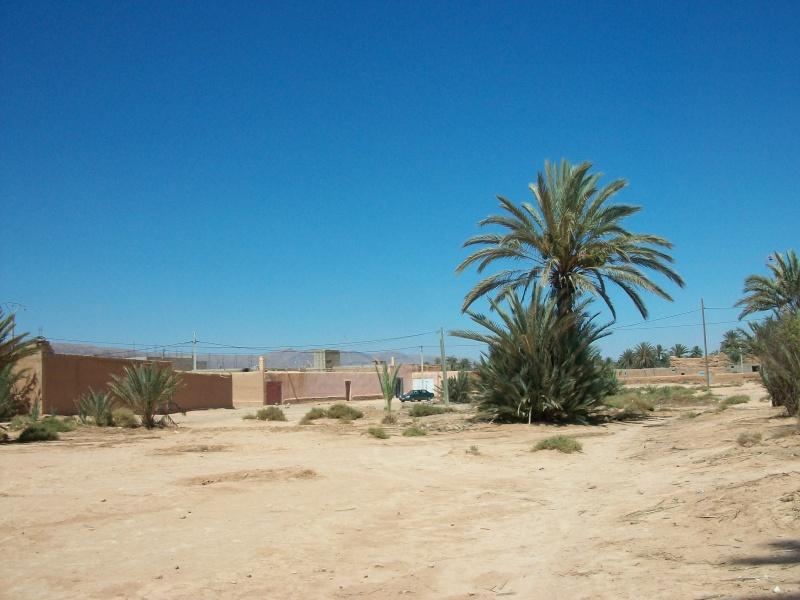 En route vers le sahara, avec ma Mercedes!  - Page 4 100_4315