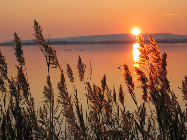 6 - Concours lever/coucher soleil ... septembre/octobre - Page 2 Img_7410