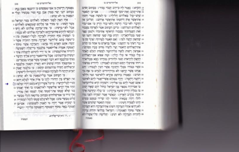 Romain 10:13 (TMN) => tout homme qui invoquera le nom de Jéhovah sera sauvé - Page 4 Img_2021