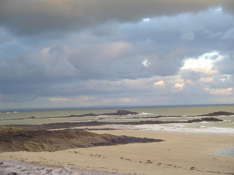 Séminaire Moulage en Bretagne/pêche aux moules !!!! - Page 7 Dsc01817