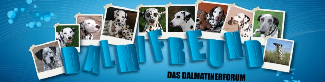 Dalmatiner-Forum Dalmifreund Banner10