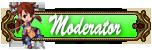 Metin2 Ranks Modera11