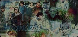 Fórum de Harry Potter