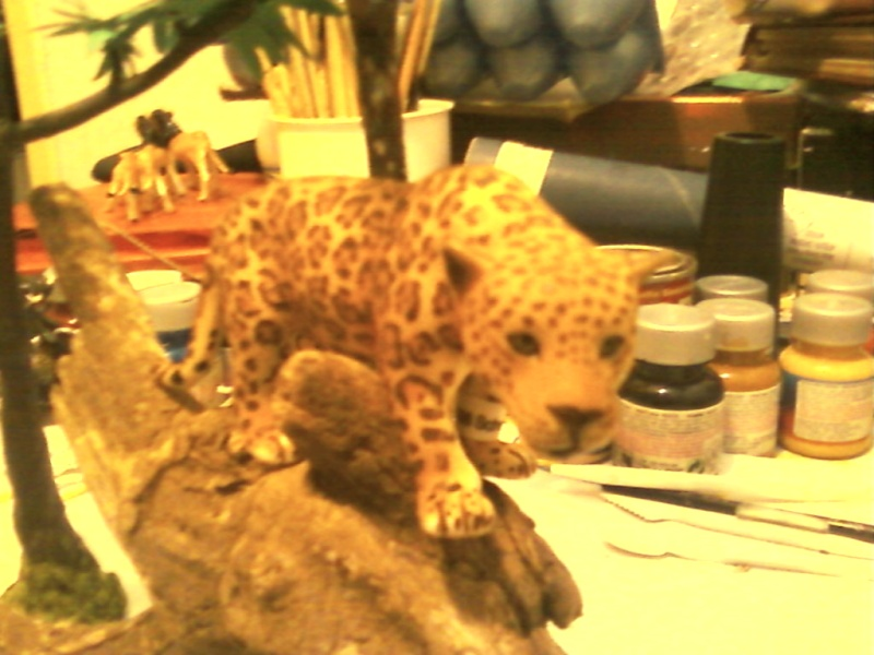 Thank you Roger, the schleich jaguar Foto-030