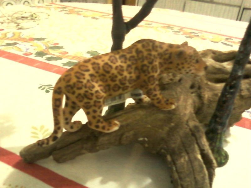 Thank you Roger, the schleich jaguar Foto-032