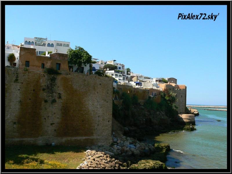 maroc 2011 =D Rep12511