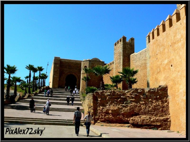 maroc 2011 =D Rep12512