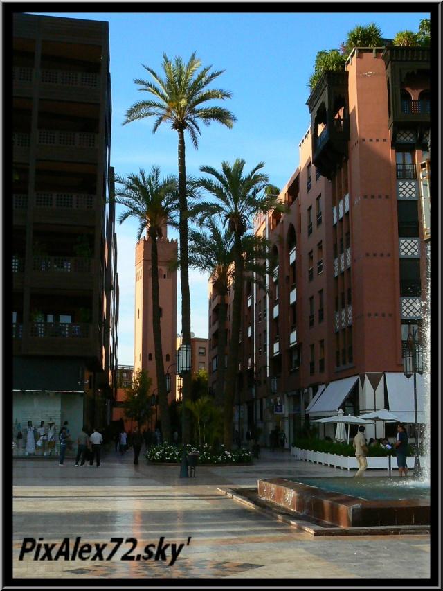 maroc 2011 =D Rep12520