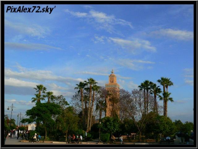 maroc 2011 =D Rep12521