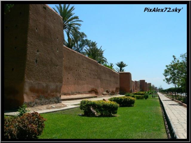 maroc 2011 =D Rep12525