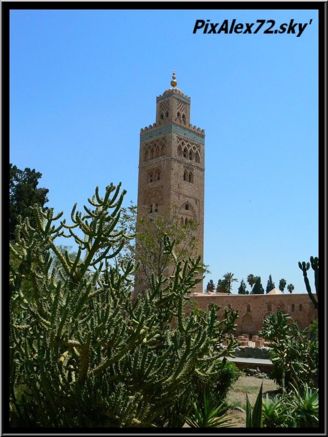 maroc 2011 =D Rep12526