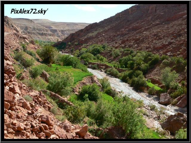 maroc 2011 =D Rep12544