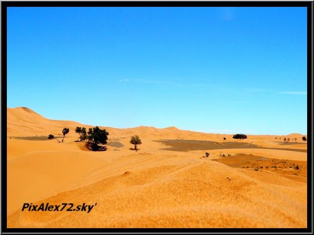 maroc 2011 =D Rep12612