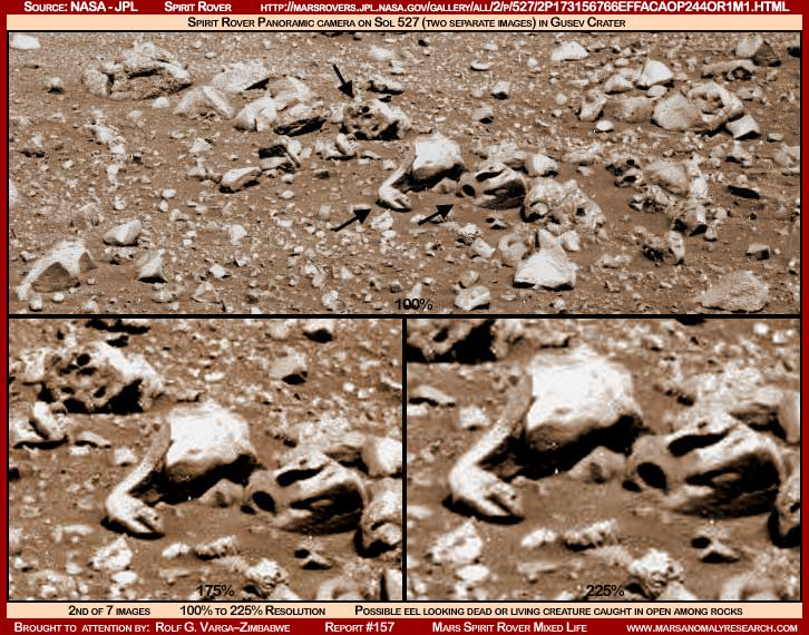Mars - Lander and Rover Images 2-157-10