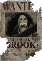 Die epic-monsterhunters.com Strohhut-Piraten - Seite 3 Brookb10