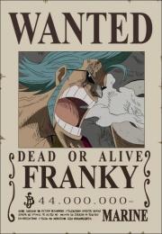 Die epic-monsterhunters.com Strohhut-Piraten - Seite 3 Franky10