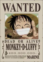 Die epic-monsterhunters.com Strohhut-Piraten - Seite 3 Luffyb10