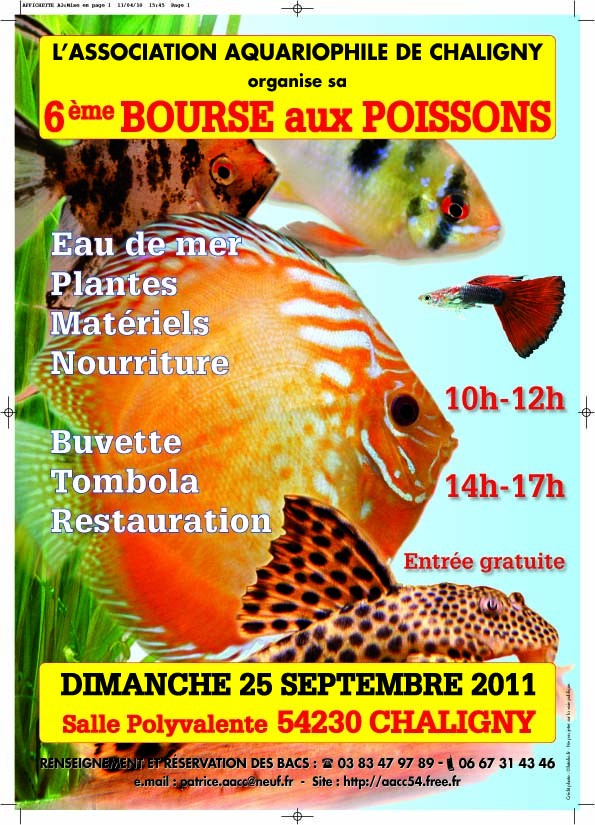 Bourse à Chaligny le 25 septembre 2011 Affich11