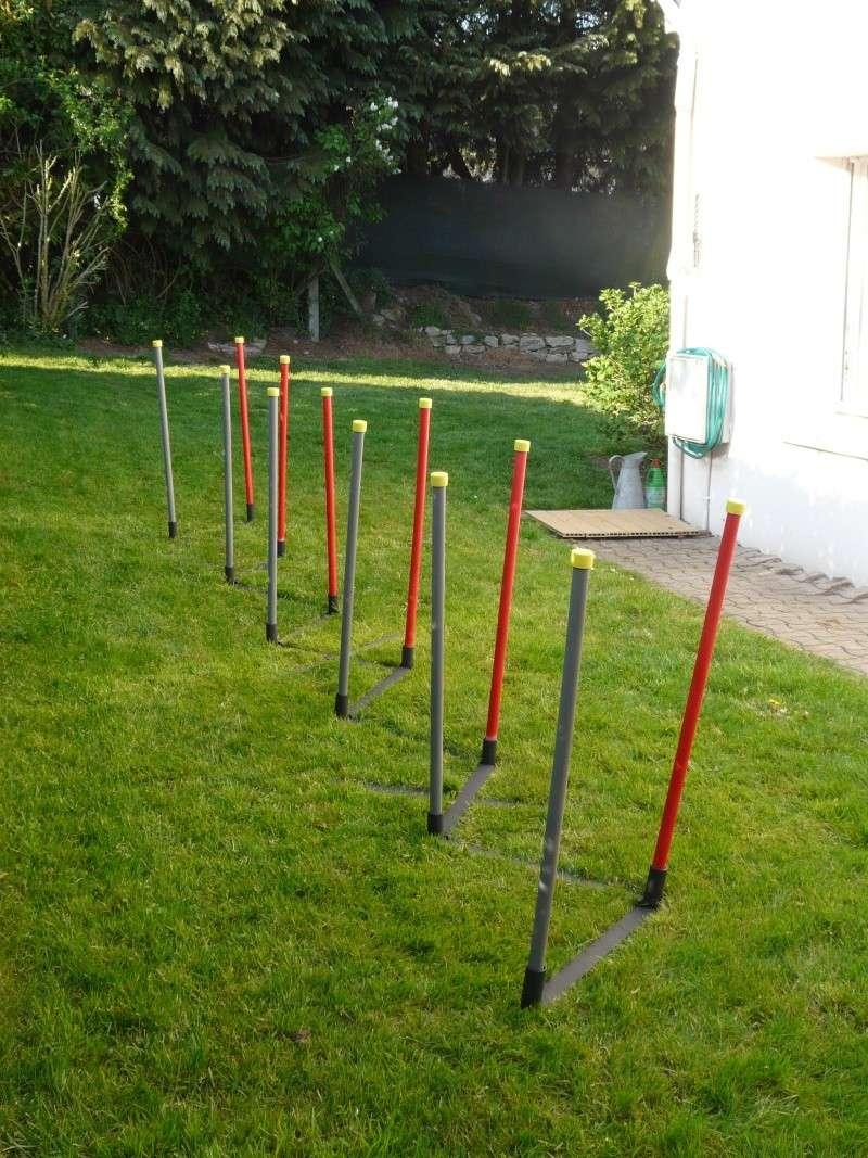 chiot - Fabricant D'obstacles d'agility--Obstacles évolutif--Agrès multi éveil chiot--PRO-- P1040016